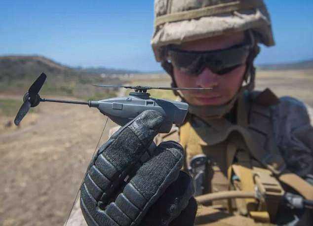 ABD ordusundan 'siyah eşek arısı' adımı
