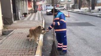 Üsküdar Belediyesi´nde görev yapan bir temizlik işçisinin, köpekle olan dostluğu izleyenlerin içini