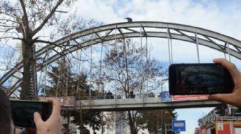 Ordu'nun Fatsa ilçesinde bir vatandaş, üst geçidin demirlerine çıkarak intihar girişiminde bulundu.