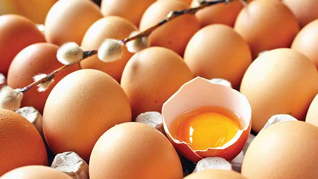 1.5+ayd%C4%B1r+inceleniyor,yumurtalar+temiz%21;