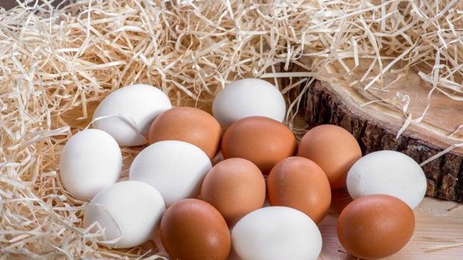 %C3%87orum%E2%80%99dan+haftada+2+milyon+yumurta+ihracat%C4%B1