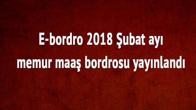 E-bordro+2018+%C5%9Eubat+ay%C4%B1+memur+maa%C5%9F+bordrosu+yay%C4%B1nland%C4%B1+