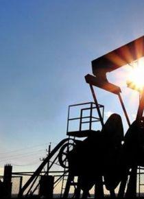 'Yüksek petrol fiyatları buna neden olabilir'