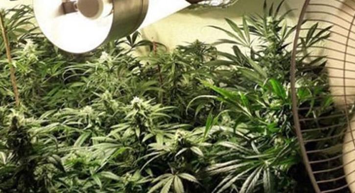 Uyuşturucu üretimi için kurulan özel ışıklandırma ile üretim yapıyorlar