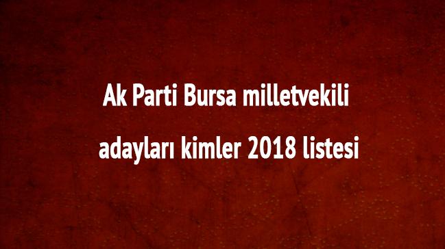 Bursa Ak Parti milletvekili adayları kimler 2018 Ak Parti Bursa milletvekili listesi son dakika