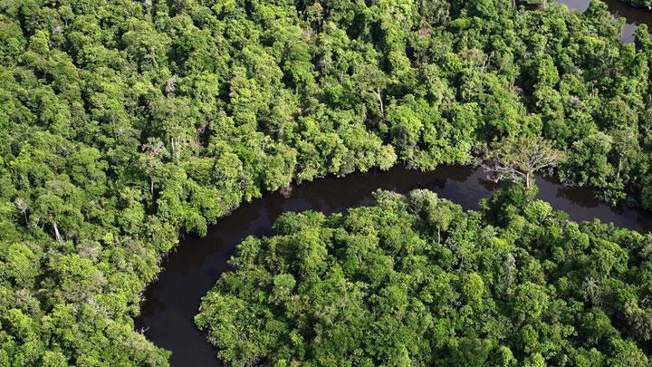 Amazonlar%E2%80%99da+kurakl%C4%B1k+karbon+emilimini+tersine+%C3%A7eviriyor+
