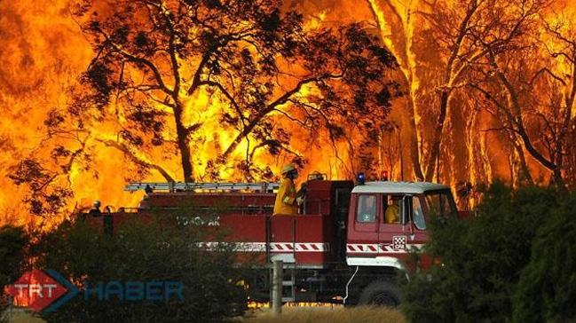 Avustralya'daki orman yangınları yerleşim yerlerini tehdit ediyor
