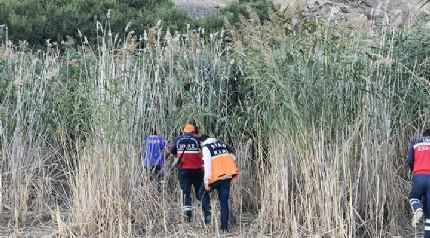Kayıp Sedanur'un köyündeki sazlık alan tekrar arandı