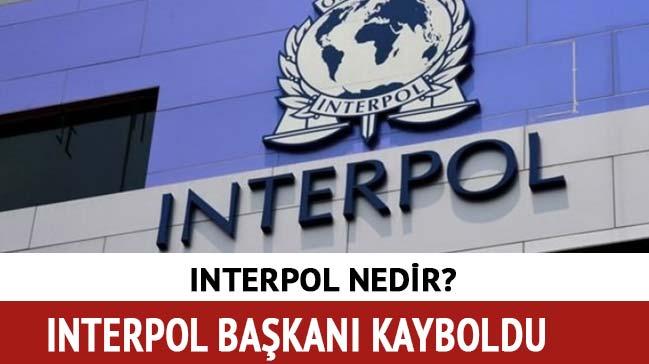 Interpol Başkanı son dakika kayboldu! Interpol nedir ne demek, başkanı kimdir?