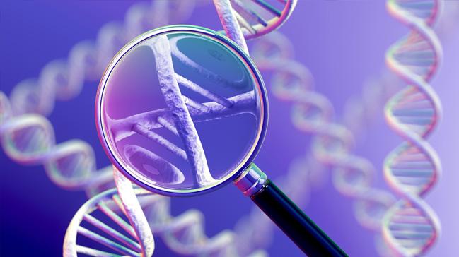 DNA+ile+ikiz+do%C4%9Fumlar%C4%B1+aras%C4%B1ndaki+ili%C5%9Fki+%C3%A7%C3%B6z%C3%BCld%C3%BC