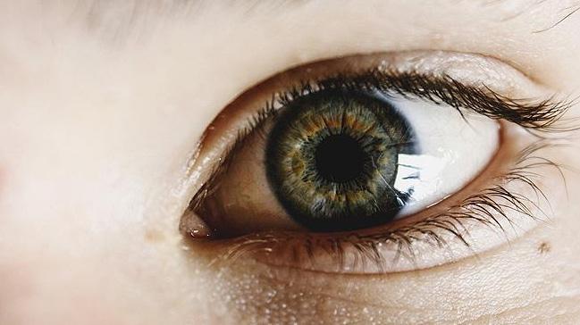 ABD%E2%80%99li+bilim+insanlar%C4%B1+g%C3%B6rme+bozukluklar%C4%B1n%C4%B1n+tedavisi+i%C3%A7in+retina+%C3%BCretti