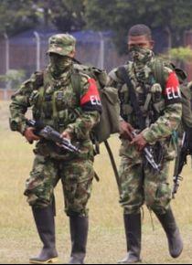 Kolombiya'da güvenlik güçleri ile FARC muhalifleri arasında çatışma: 2 ölü