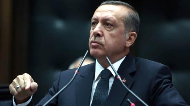 Erdoğandan hayvan hakları talimatı: Yasa hala neyi bekliyor, bir an önce çıkartın