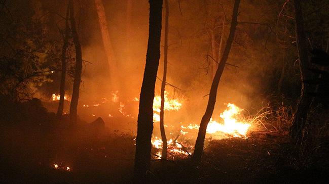 Antalya'nın Kemer ilçesinde ormanlık alandaki yangın büyümeden kontrol altına alındı