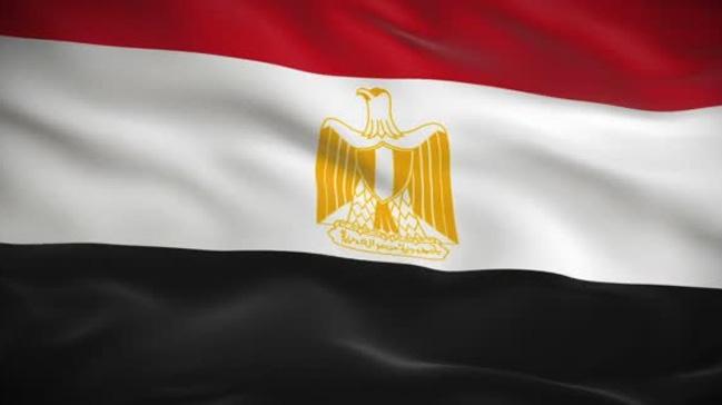 Mısırda sarı yelek satışına yasak
