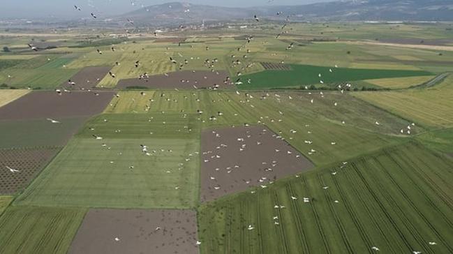 Tarımsal hasılada Avrupa'da 1'inci, dünyada 7'nciyiz