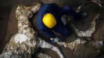 Pompeiide taşlaşmış at kalıntıları bulundu 50