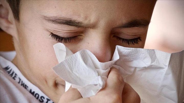 %E2%80%99Domuz+gribi+de%C4%9Fil+mevsimsel+grip%E2%80%99