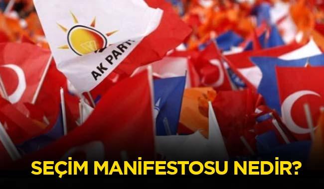 Manifesto+ne+demek%E2%80%99